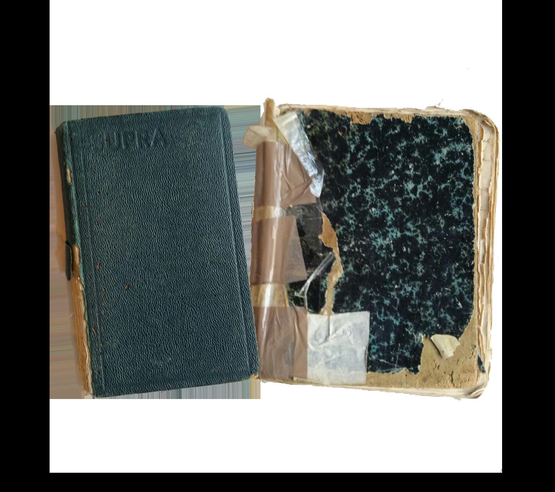 Dagboek van Bernie (links) en Ellis (rechts)