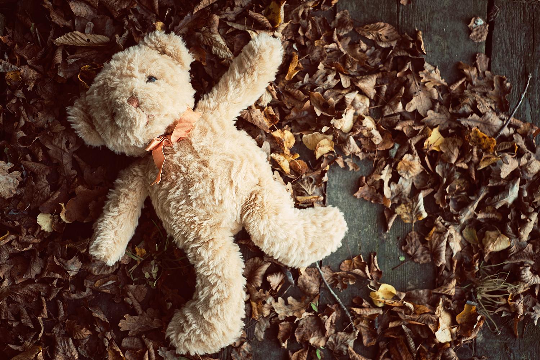 Teddybeer